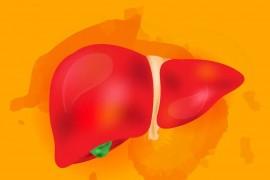 """""""狡猾""""的肝癌可能逃脱体检的监控,注意:肝功正常不代表肝脏正常"""